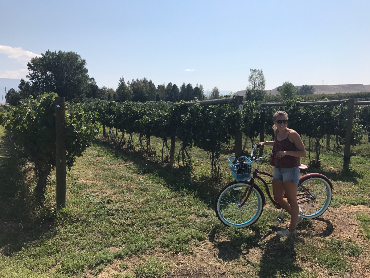 Grand Junction + Palisade, CO: Wine Country